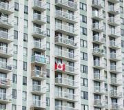 CanadianFlag-1045